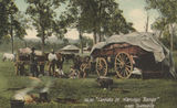 Picture relating to Townsville - titled 'Carriers on Harveys Range, near Townsville, ca. 1905'