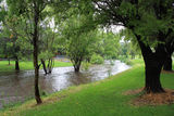 Picture relating to Tenterfield - titled 'Tenterfield Creek, Tenterfield'