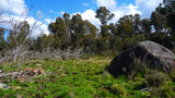 Picture of / about 'Square Rock' the Australian Capital Territory - Square Rock grassy wetlands at saddle