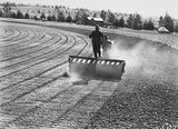 Picture relating to Kingston - titled 'Cletrac crawler tractor towing a roller preparing the ground for sowing Manuka Oval, Kingston.'