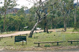 Picture relating to Grampians National Park - titled 'Grampians National Park: Troopers Creek Camp Ground'