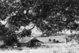 Picture relating to Roadvale - titled 'Country scene in the area south east of Ipswich, Roadvale, Queensland'