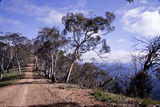 Picture of / about 'Mount Terrible Track' Victoria - Mount Terrible Track