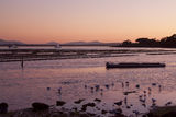 Picture relating to Coffin Bay - titled 'Coffin Bay Sunrise'