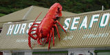 Picture relating to Stanley - titled 'Giant Lobster Sculpture Stanley '