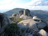 Picture relating to Mount Burbidge - titled 'Top of Mount Burbidge looking north-west to Mount Namadgi'