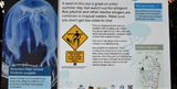 Picture relating to Port Douglas - titled 'Box Jelly fish warning Port Douglas '
