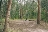 Picture of / about 'Avon River' Victoria - Avon River: Dermody Camp
