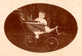 Picture relating to Saltbush Park - titled 'Child sitting in a pram at Saltbush Park, near Mackay, 1900-1910'