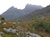 Picture relating to Cradle Mountain - titled 'Cradle Mountain'