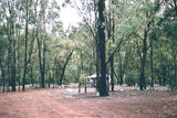Picture relating to Lake Eildon National Park - titled 'Lake Eildon National Park; Candlebark Camp Ground'