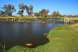 Picture of / about 'Capel River' Western Australia - Weir on Capel River WA