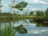 Picture relating to Ophthalmia Range - titled 'Kalgan Creek'