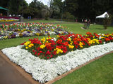 Picture relating to Toowoomba - titled 'Queen's Park'