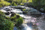 Picture of / about 'Sandy (Waterfall) Creek' New South Wales - Sandy (Waterfall) Creek