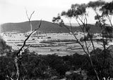 Picture relating to Ainslie - titled 'Hotel Ainslie, Northbourne Oval & Northbourne Avenue from Mt Ainslie.'