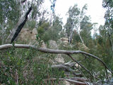 Picture relating to Booroomba Rocks - titled 'Booroomba Rocks Walking Trail'