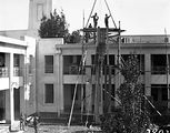Picture relating to Parliament House - titled 'Pot plants being hoisted on to the roof of Old Parliament House with block and tackle'