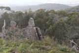 Picture of / about 'Mount Wombat' Victoria - Mount Wombat