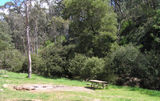 Picture relating to Yackandandah Creek - titled 'Yackandandah Creek; Stanley State Forest'