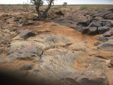 Picture relating to Nappa Merrie Waterhole - titled 'Stony flats just south of Innamincka'