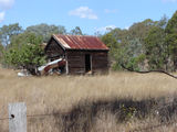 Picture relating to Cooyar - titled 'Cooyar old shed'