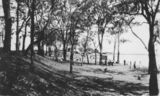 Picture relating to Woody Point - titled 'On the foreshore near Woody Point on the Redcliffe Peninsula'