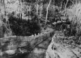 Picture relating to Mount Morgan - titled 'Iron shute from the mountain top at Mount Morgan, Queensland, ca.1883'