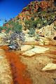 Picture relating to Redbank Gorge - titled 'Redbank Gorge'