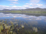 Picture of / about 'Lake Jindabyne' New South Wales - Lake Jindabyne