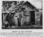 Picture relating to Stanthorpe - titled 'Residence of E. W. Hollinworth, Stanthorpe, 1873'