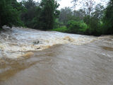 Picture relating to Tyalgum Creek - titled 'Tyalgum Creek'