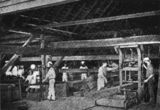 Picture of / about 'Cootharaba' Queensland - Inside the timber mill at Cootharaba, Queensland