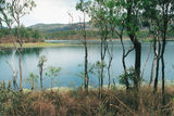 Palmer Goldfield Resources Reserve The track passes pleasant lagoons filled by the past wet season.