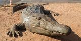 Picture relating to Port Hedland - titled 'Crocodile Sculpture Port Hedland'