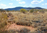 Picture of / about 'Central Mount Stuart' the Northern Territory - Central Mount Stuart